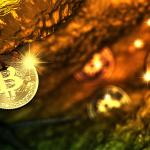 Житель Нью-Джерси признался в управлении нелицензированным обменником BTC